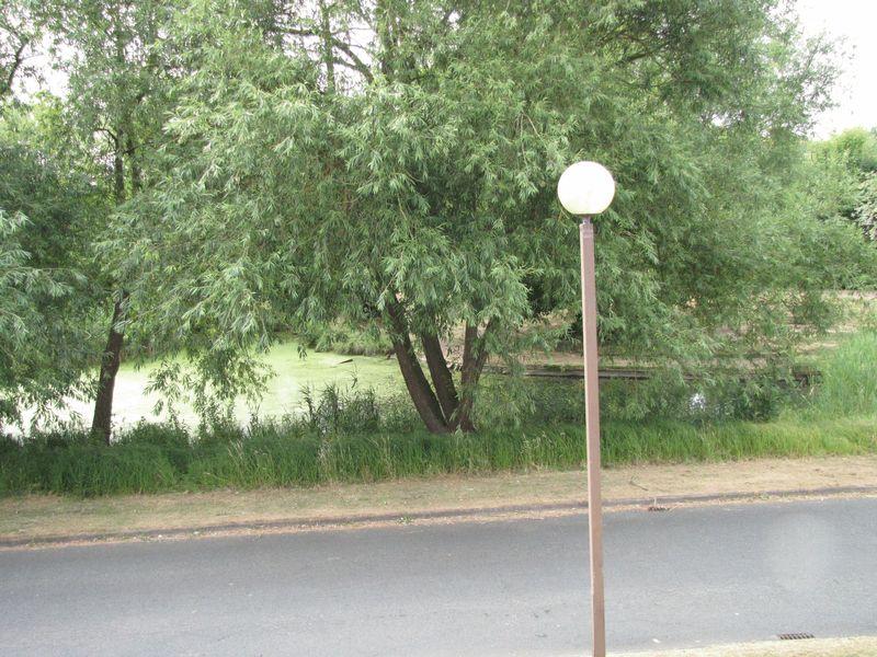 Broadway Avenue Giffard Park