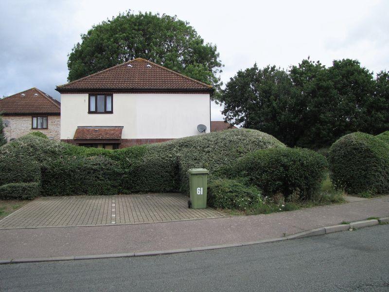 Studley Knapp Walnut Tree