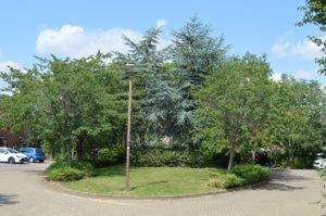 Newbridge Oval Emerson Valley