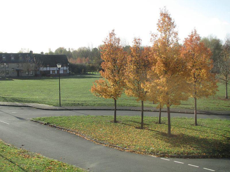 Colindale Street Monkston Park