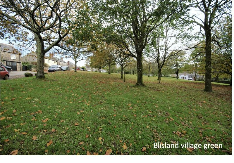 Trewint Hill Blisland