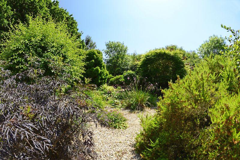 Higher Wood Bovington