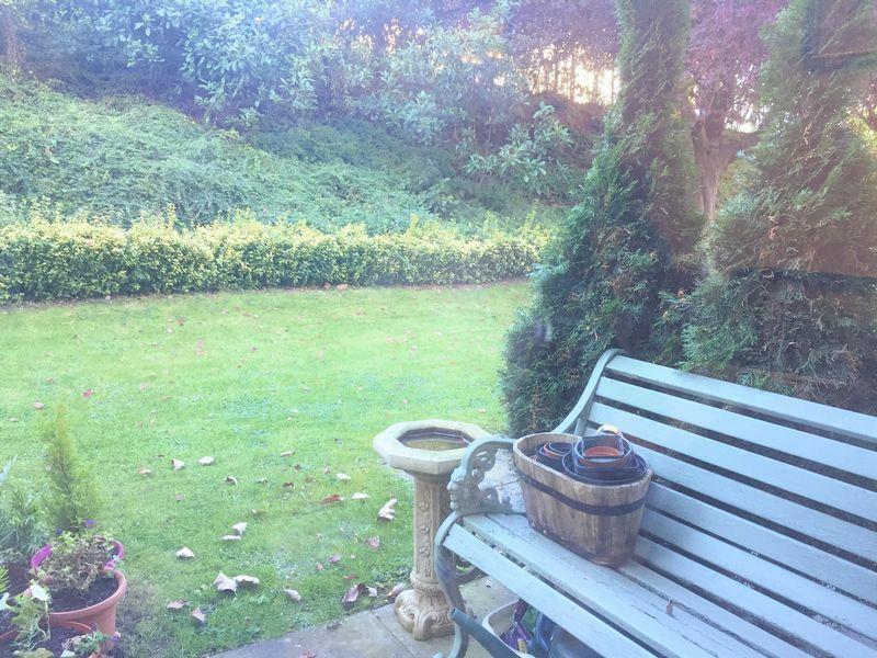 Private patio & view