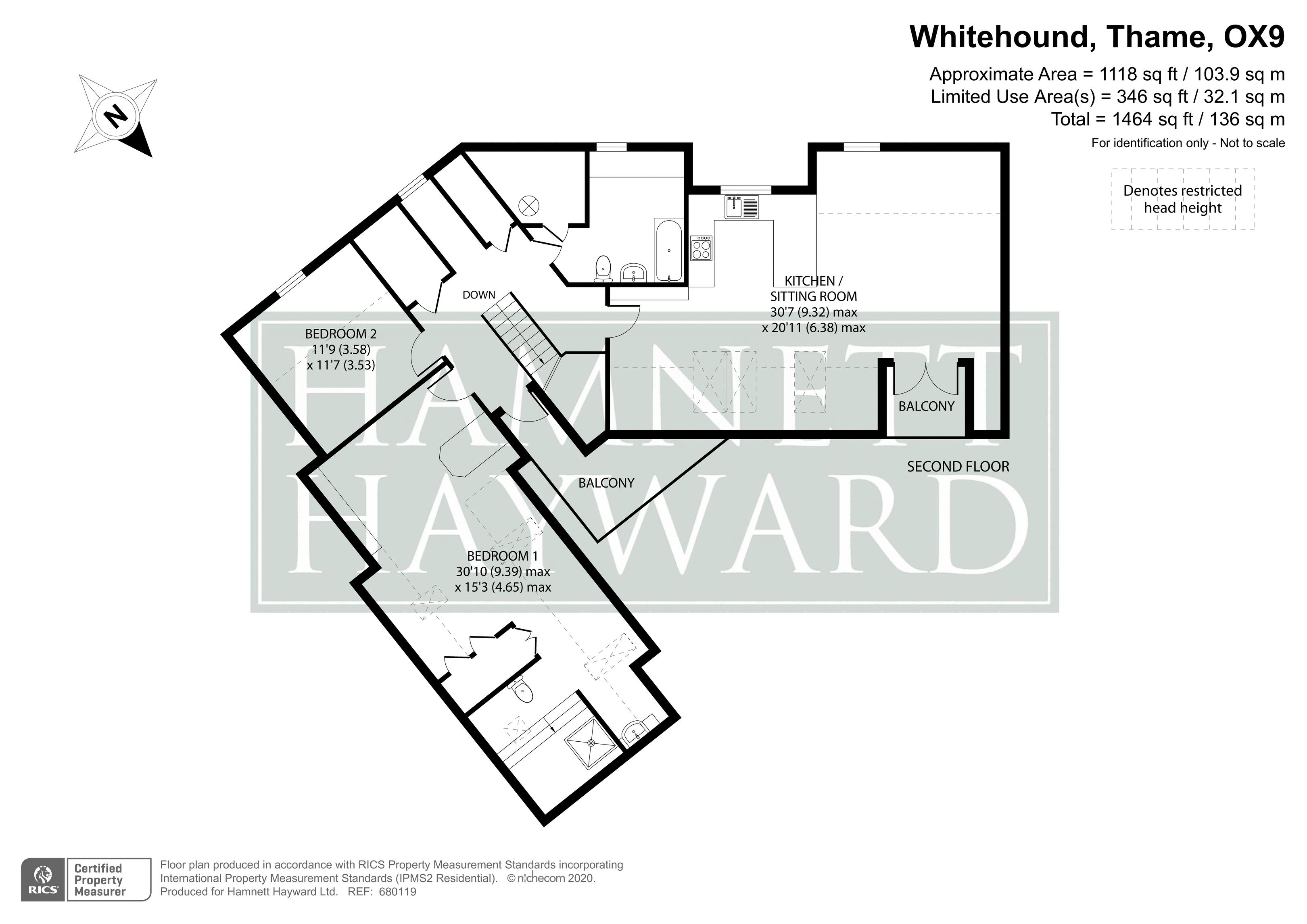 Whitehound