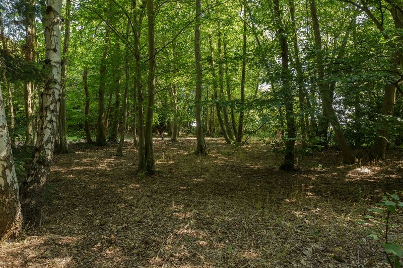 Photo 35 Grove Hill, Hellingly, East Sussex, BN27