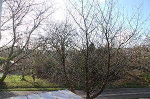 Pendour Park