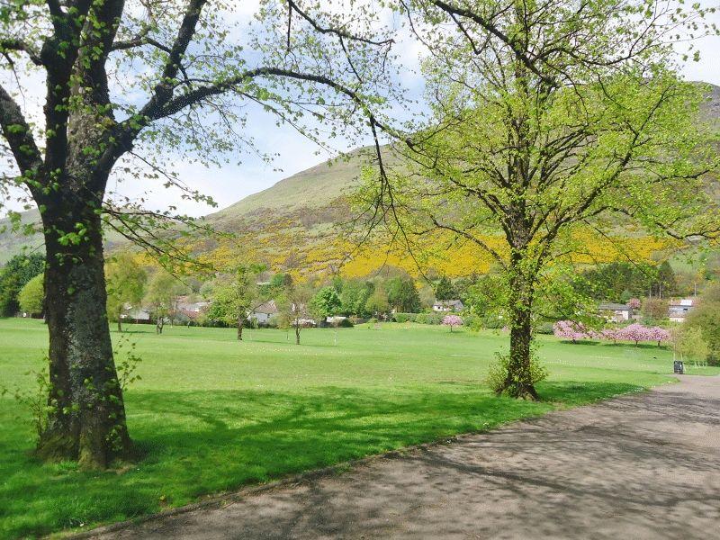 Cochrane Park Alva