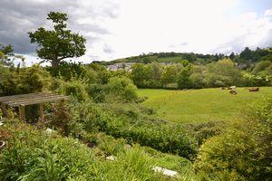 Copland Meadows