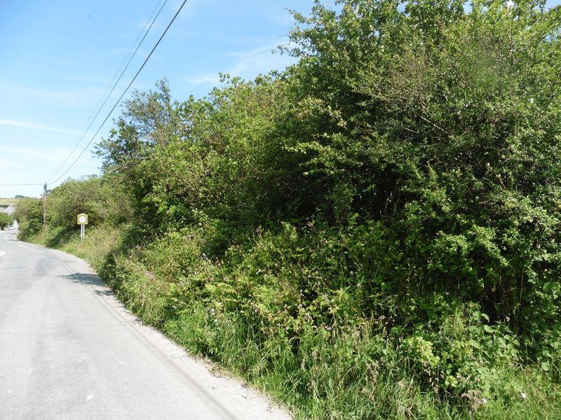 Beacon Road Foxhole