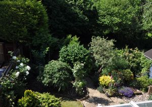 Ashridge Gardens Kingsteignton
