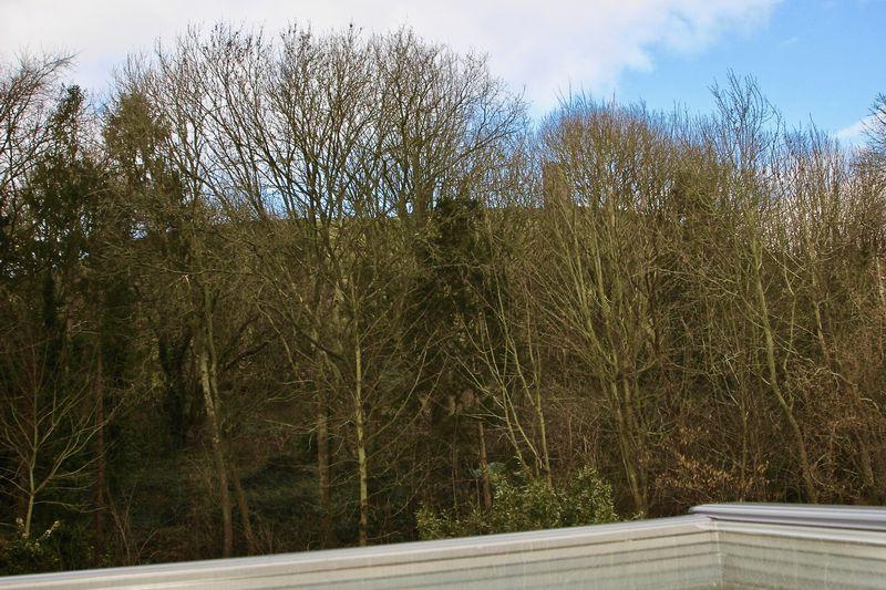 5 Ashwell Lane