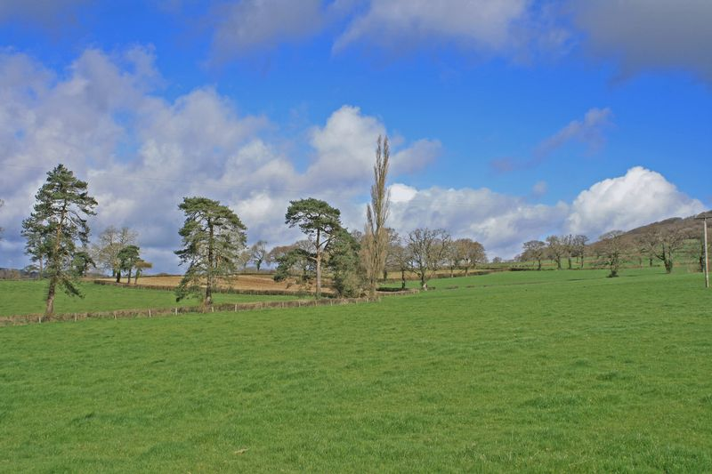 Summerlands Awliscombe