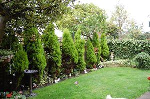 Appletree Gardens