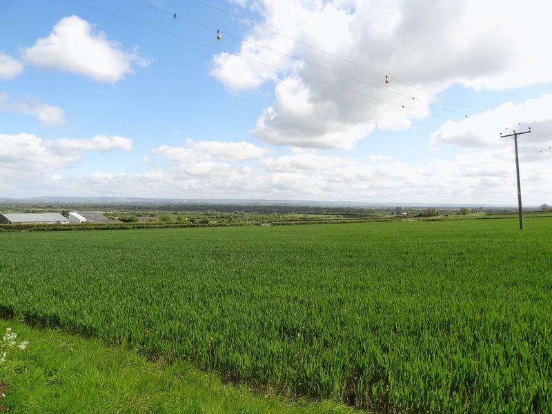 Woolavington Hill Woolavington
