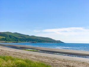 Bay Terrace