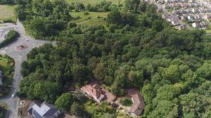 Walden Cottage