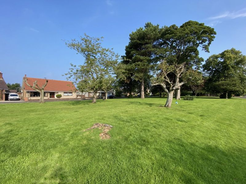 Bourtree Park
