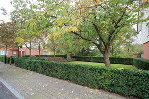 Adair Gardens