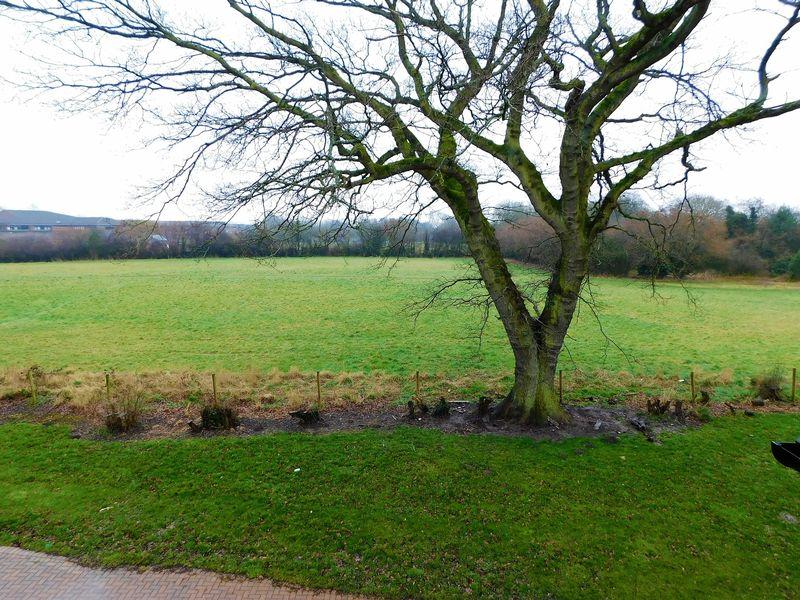 Rutland Close Yarnfield