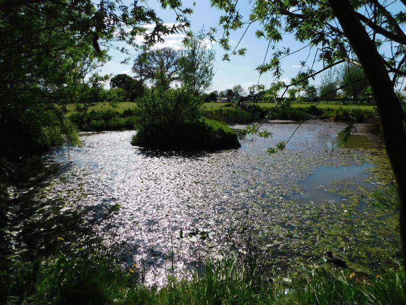 Watery Lane Haughton