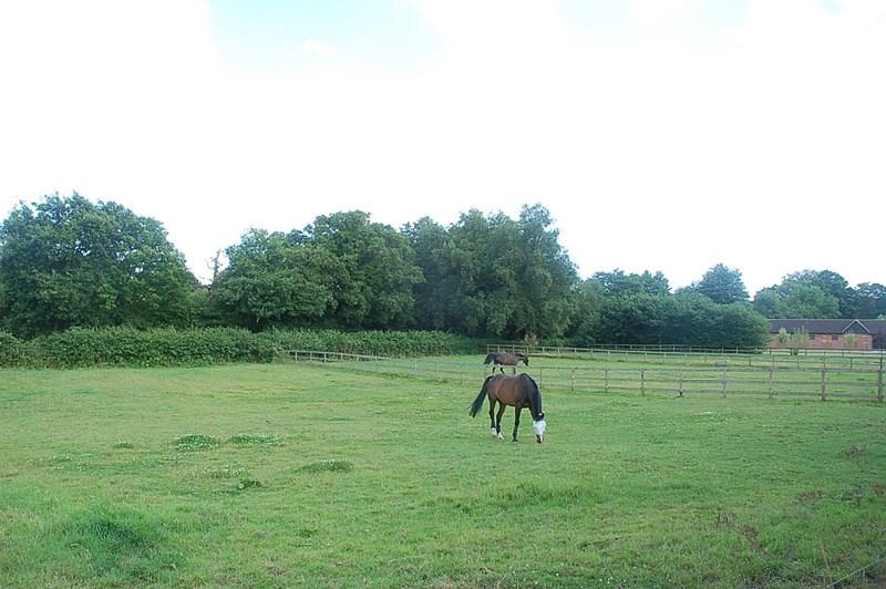 Thundry Farm Farnham Road