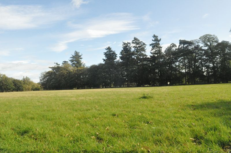 Burton Park Road