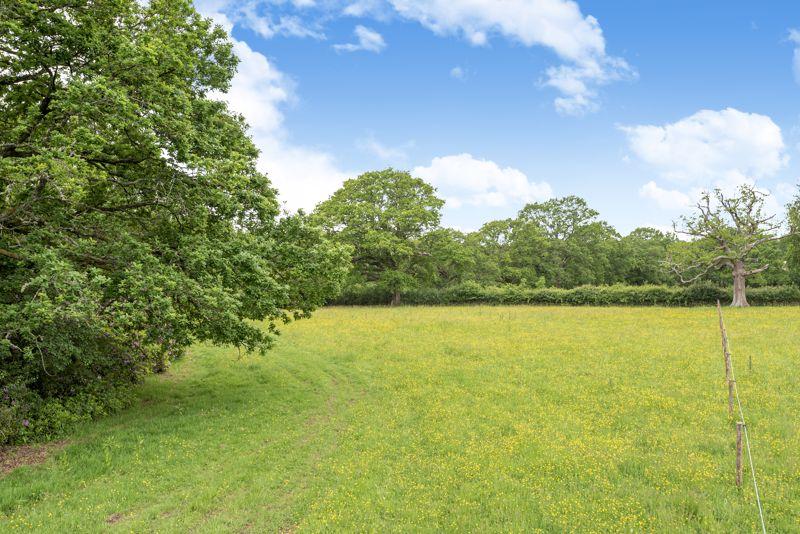 Lodge Farm Catts Hill