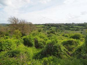 Cleevedale Road