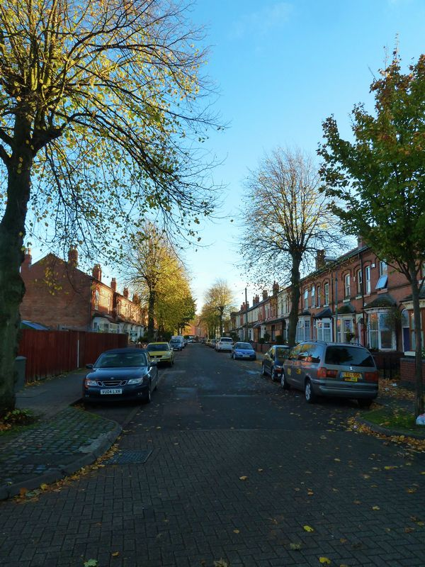 Birchwood Crescent, Balsall Heath / Mose...