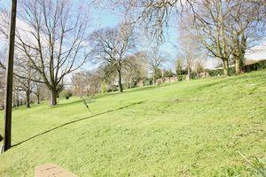 Arboretum Avenue