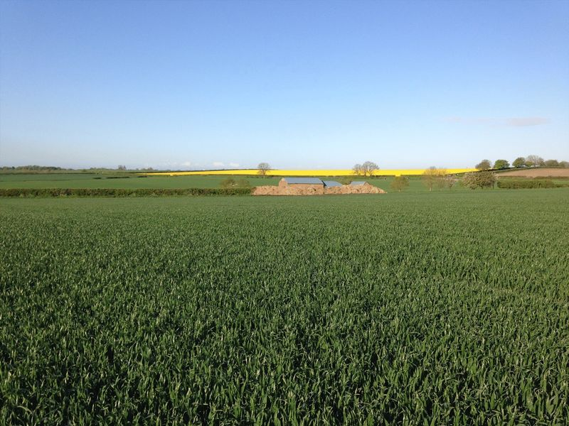 Land For Rent Manor Farm, Great Sturton,...