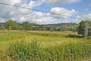 Higher Greenhead Sidbury