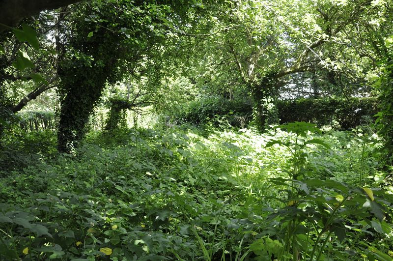 11a Meadow Close